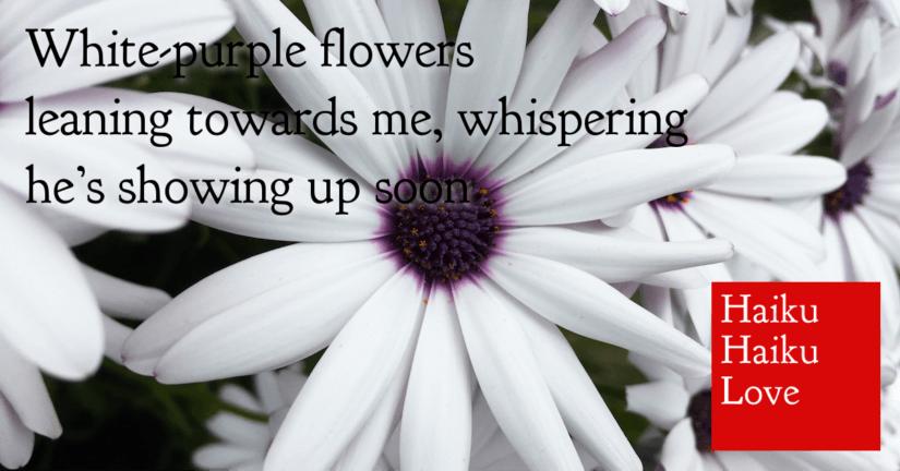 White-purple flowers
