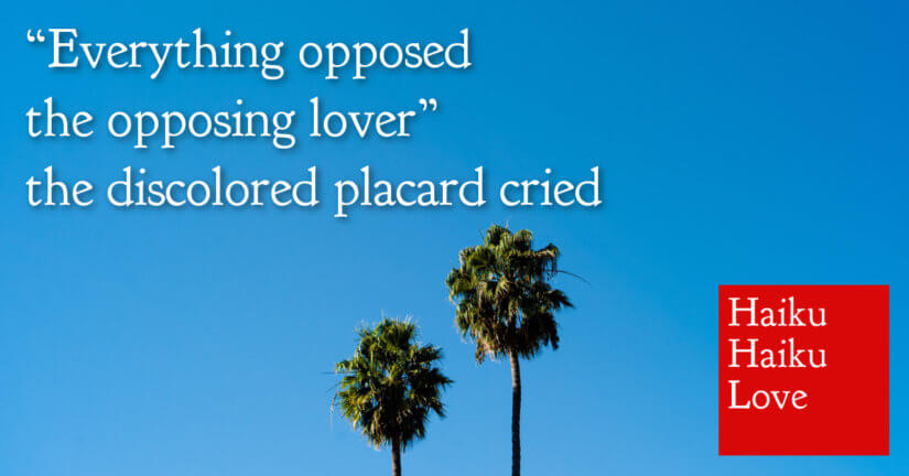 Everything opposed